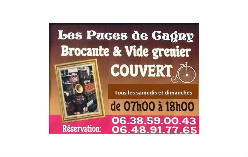 Les puces de Cagny