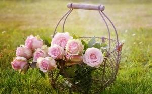 Récompenses maisons fleuries